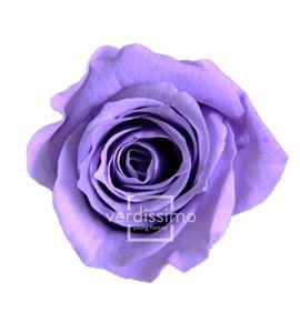 Rosa preservada princesa 16 unid rsp/4831 - RSP4831-03-ROSA-PRINCESS