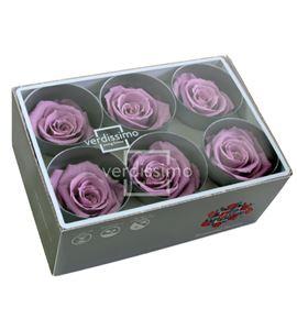 Rosa preservada standart 6 unid rst/283g - RST283G-03-ROSA-STANDARD