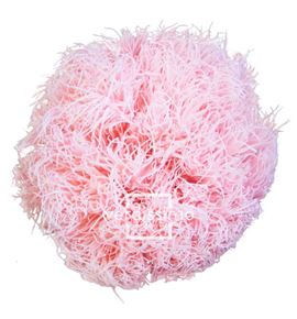 Green ball preservado rosa pastel grb/2420 - GRB2420-03-GREEN-BALL