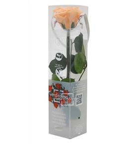 Rosa amorosa preservada mini prz/2550 - PRZ2550-05-ROSA-TALLO-MINI