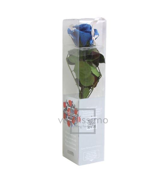 Rosa amorosa preservada mini prz/2630 - PRZ2630-05-ROSA-TALLO-MINI