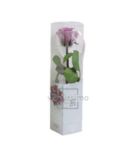 Rosa amorosa preservada mini prz/2830 - PRZ2830-05-ROSA-TALLO-MINI