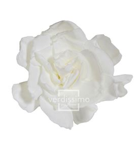 Gardenia preservada 3und gar/2000 - GAR1000-03-GARDENIA