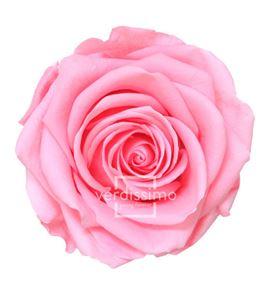 Rosa preservada premium 4 unid rsg/2420 - RSG2420-03-ROSA-PREMIUM