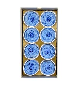 Rosa preservada 8 unid azul claro b-02 sr - B-02SR
