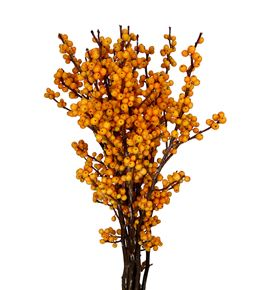 Ilex golden verboom 60 - ILEGOLVER