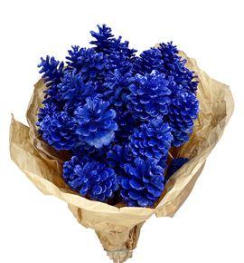 Piña azul purpurina x50 - PINAZUPUR