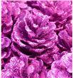 Piña fucsia purpurina x50 - PINFUCPUR1