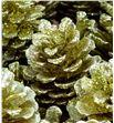Piña oro purpurina x50 - PINOROPUR1