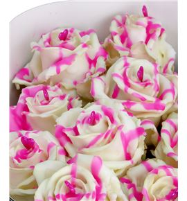 Rosa hol choco blanchepink love 70 - RGRCHOBLA