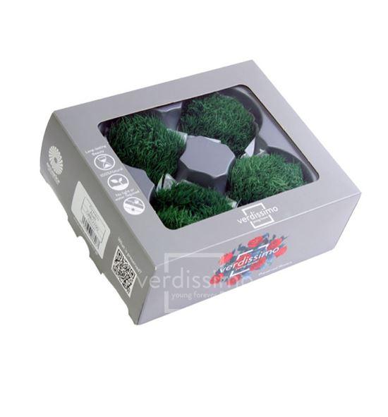 Green ball preservado verde grb/2100 - GRB2100-03-GREEN-BALL