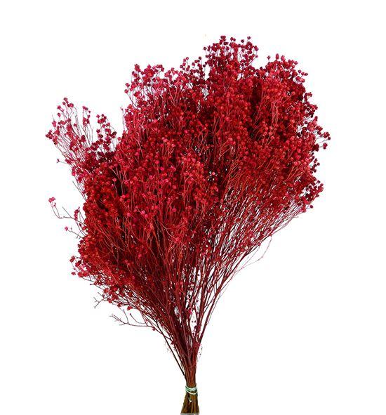 Broom bloom seco rosa - BROSECROSOSC