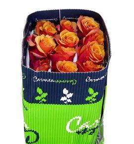 Rosa col cherry brandy 50 - RCCHEBRA