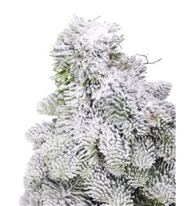 Arbol nobilis nieve 30 a2 - ARBNOBNIE