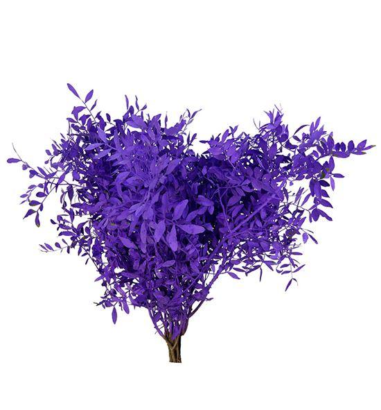 Lentisco lila a2 - LENLIL