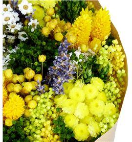 Bqt fantasy yellow mini preservado/seco - BQTFANYEL