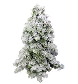 Arbol nobilis nieve 30 - ARBNOBNIE