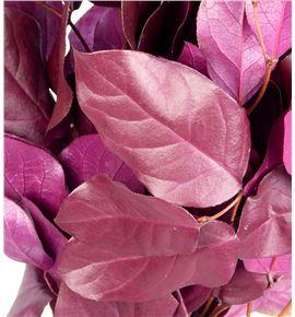 Salal tips preservado lila - SALTIPPRELIL