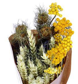 Natural seco yellow blue - NATSECYELBLU