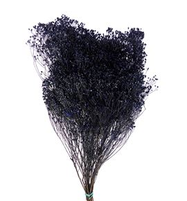 Broom bloom seco azul - BROSECAZU