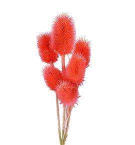 Eryng preservado rosa claro - ERYPREROSCLA