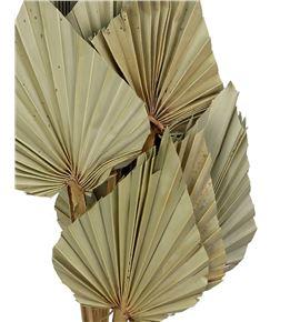 Palmito seco medium natural 45cm - PALSEC