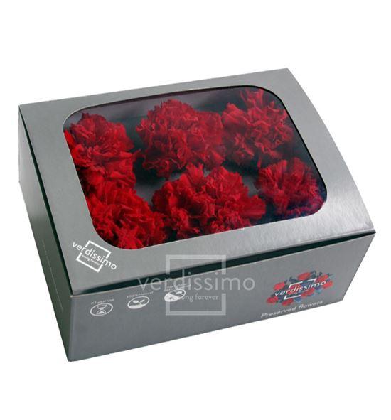 Clavel preservado rojo car/1200 - CAR1200-03-CLAVEL