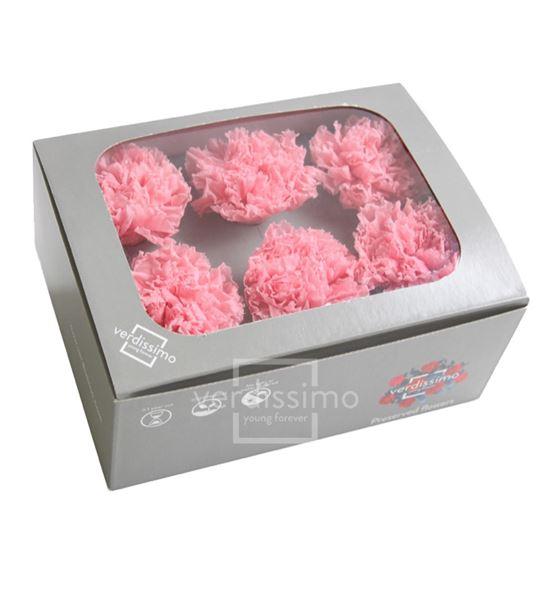 Clavel preservado rosa pastel car/1420 - CAR1420-03-CLAVEL