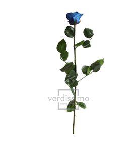 Rosa amorosa preservada granel prz/3630 - PRZ3630-03-ROSA-TALLO-STANDARD