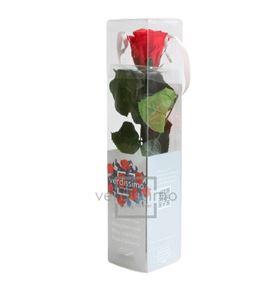 Rosa amorosa preservada mini prz/2200 - PRZ2200-05-ROSA-TALLO-MINI