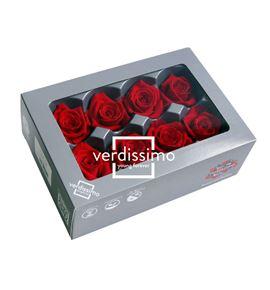 Rosa preservada media 8 unid rme/3200 - RME3200-03-ROSA-MEDIUM