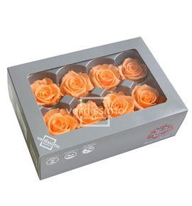 Rosa preservada media 8 unid rme/3550 - RME3550-03-ROSA-MEDIUM