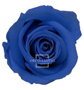 Rosa preservada mini 12 unid rsm/1631 - RSM1631-03-ROSA-MINI