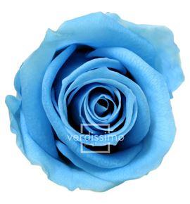 Rosa preservada mini 12 unid rsm/1641 - RSM1641-03-ROSA-MINI