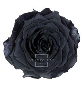 Rosa preservada premium 4 unid rsg/2990 - RSG2990-03-ROSA-PREMIUM