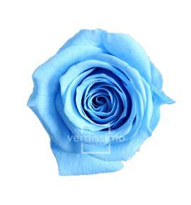 Rosa preservada princesa 16 unid rsp/4640 - RSP4640-03-ROSA-PRINCESS