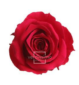 Rosa preservada princesa 16 unid rsp/4800 - RSP4800-03-ROSA-PRINCESS