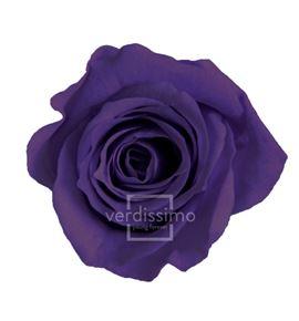 Rosa preservada princesa 16 unid rsp/4840 - RSP4840-03-ROSA-PRINCESS_