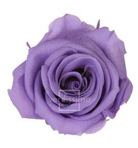 Rosa preservada media 8 unid rme/3850 - RME3830-03-ROSA-MEDIUM