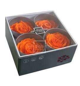 Rosa preservada premium 4 unid rsg/2530 - RSG2530-03-ROSA-PREMIUM