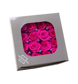 Rosa preservada princesa 16 unid rsp/4430 - RSP4430