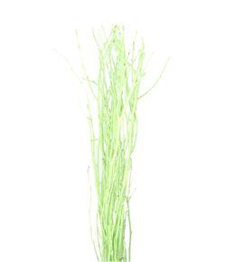 Berk verde - BERVER