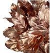 Salal tips cobre - SALTIPCOB1
