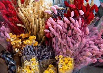 Diferencias entre las flores preservadas y secas