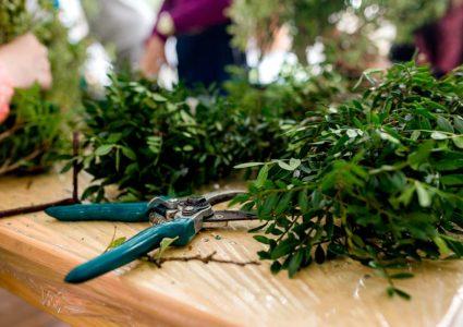 Uso de los verdes en floristería